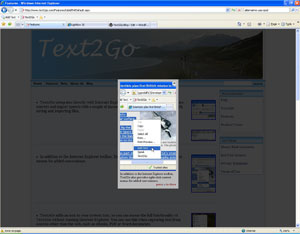 Text2Go website lightbox