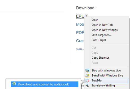 Text2Go ebook to audiobook accelerator for IE8